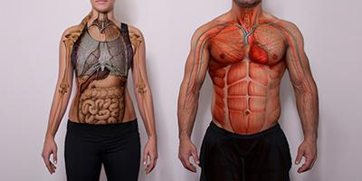 Fiziologija sporta